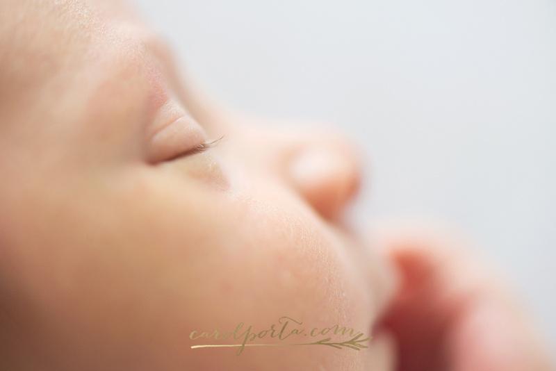 carol porta newborn and family photographer south florida