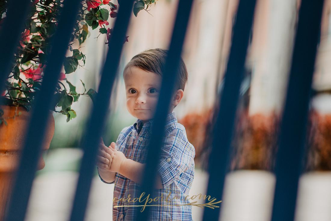 Baby & Family Photographer Carol Porta Photography