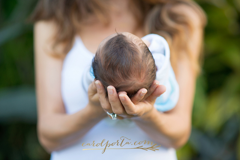 carol porta newborn and family photographer south florida